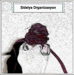 Sidelya Organizasyon
